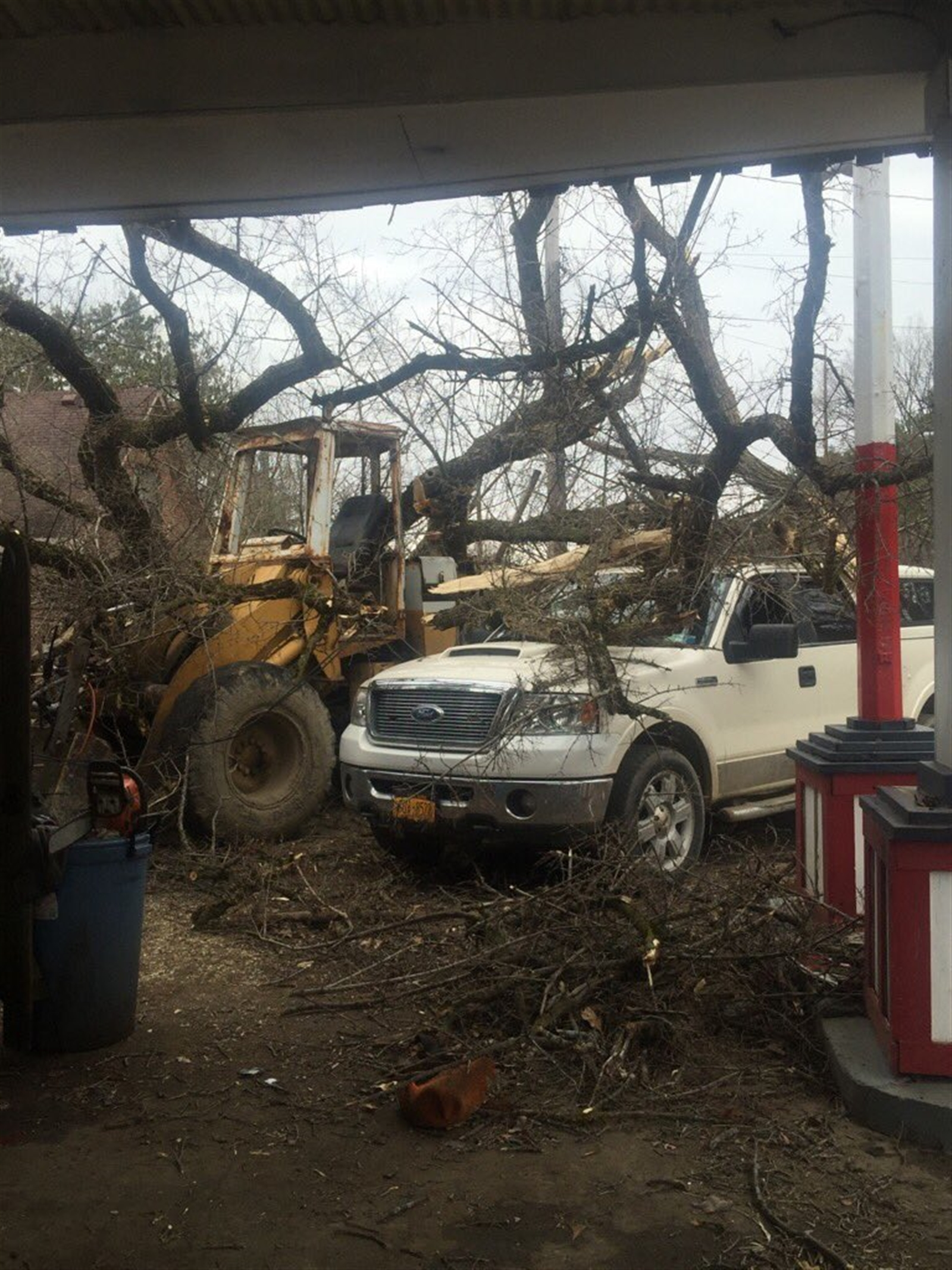 Double trouble at North Boston Garage on Boston State Road after toppled elm tree took out a front loader and F-150.