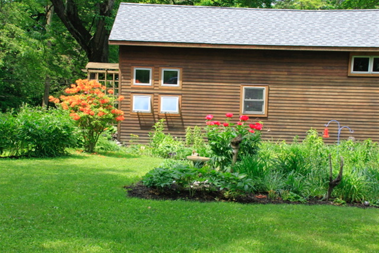 "A summertime view of Bonnie Bowen's cabin.She describes her gardens as ""cottage messy."""