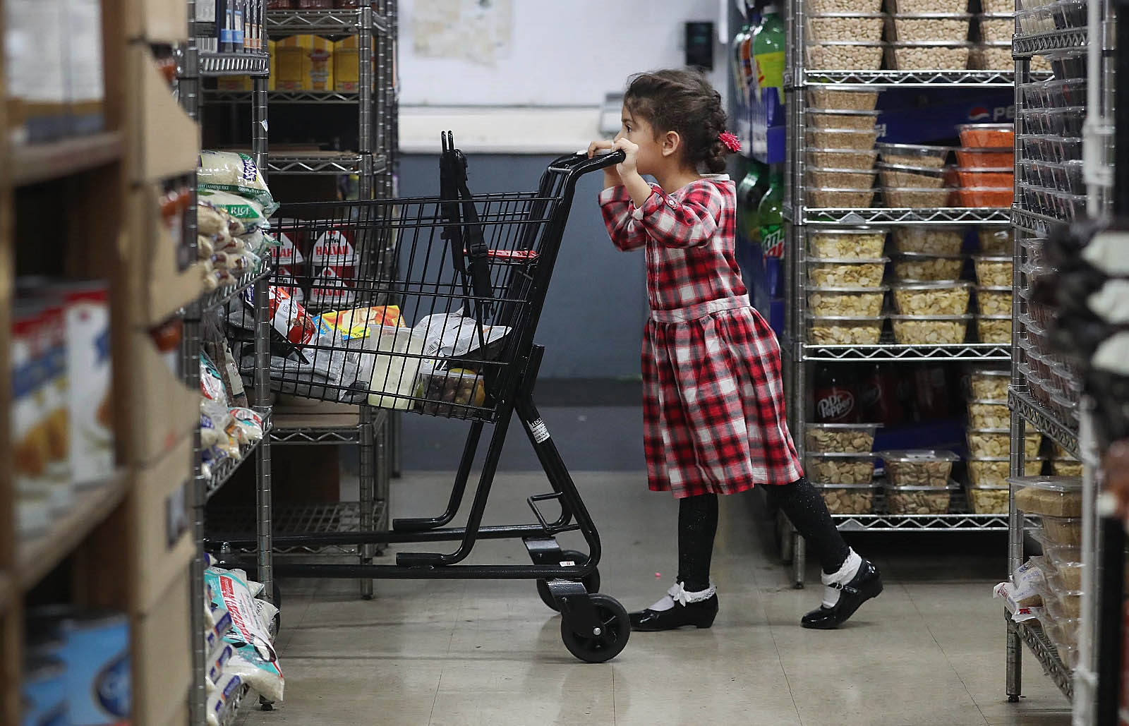 Guercio & Sons is a historic Grant Street food shop. Sedra Abokefaya, 4, pushes the cart as her family shops there.