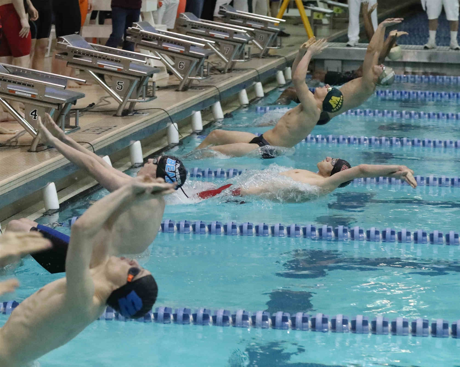The start of the Boys 200 Yard Medley Heat 1 in the Section VI boys swimming championships at University of Buffalo Alumni Arena Natatorium.