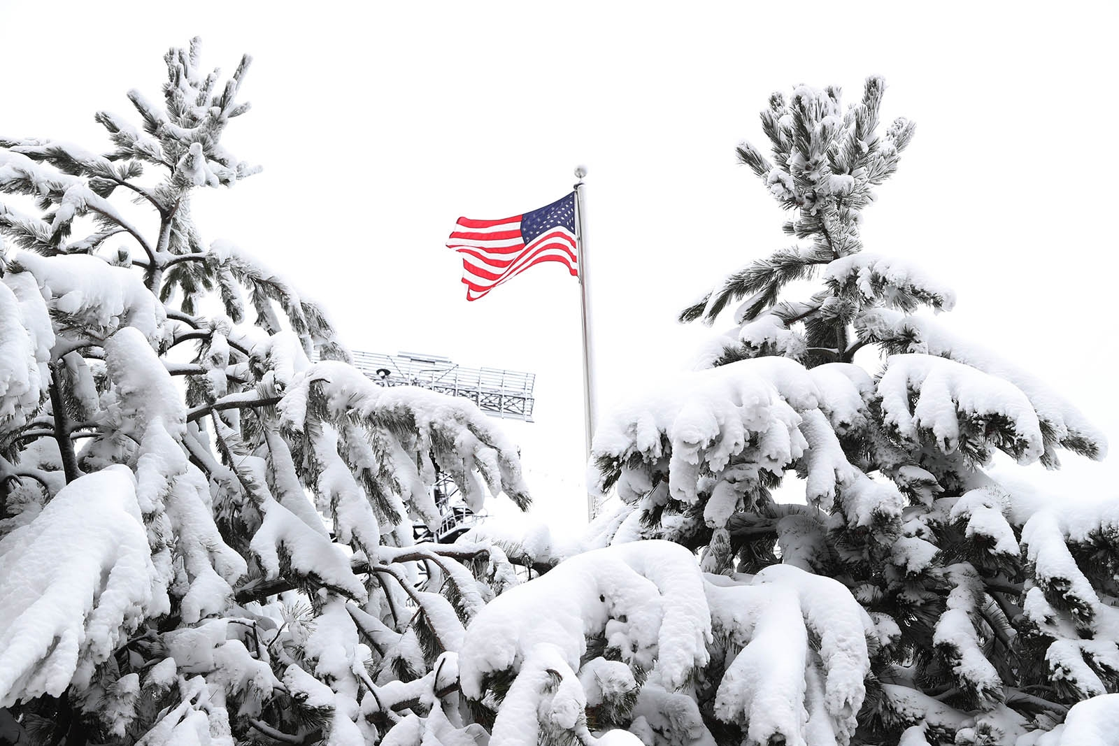 A flag flies between snow-laden trees at the Naval Park in Buffalo.