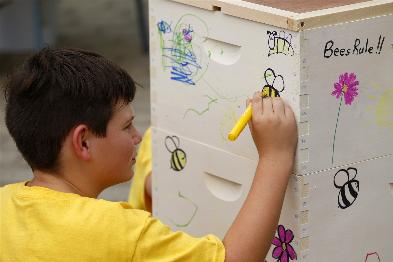 Jacob Holko decorates a beehive during Masterson's Fourth Annual Honey Harvest Festival in East Aurora.